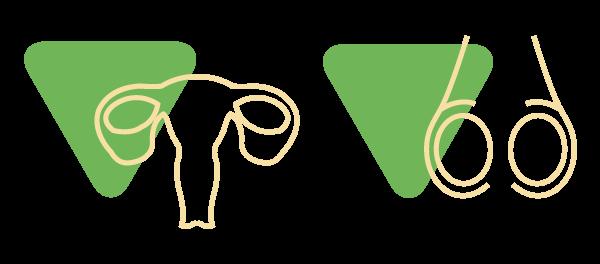 Das Bild zeigt Icons der Gonaden bzw. der Hoden und Eierstöcke als Metapher für die Endokrinologie. Endomedicum - Endokrinologie Düsseldorf Essen Mönchengladbach Bonn.
